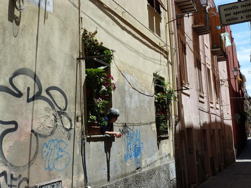 Kleines Blumenparadies in Cagliari