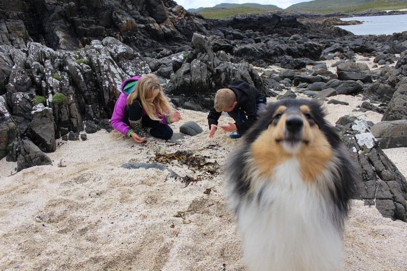 Kein Sand, sondern fein gemahlenen Muscheln liegen am Strand