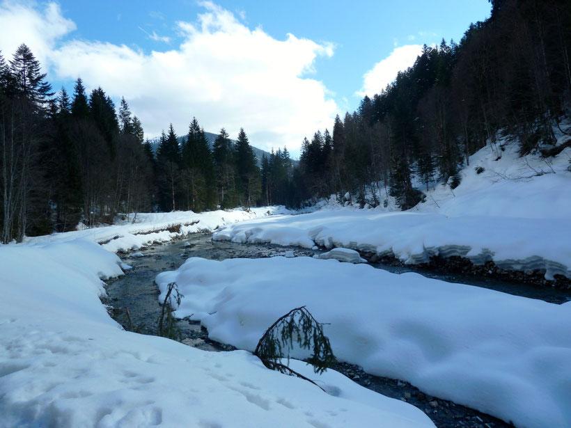 Vom Schwabenhof zur Schelpen Alpe