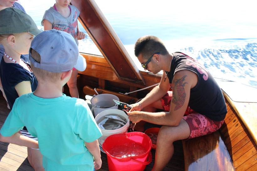 Fische ausnehmen für´s Mittagessen an Bord