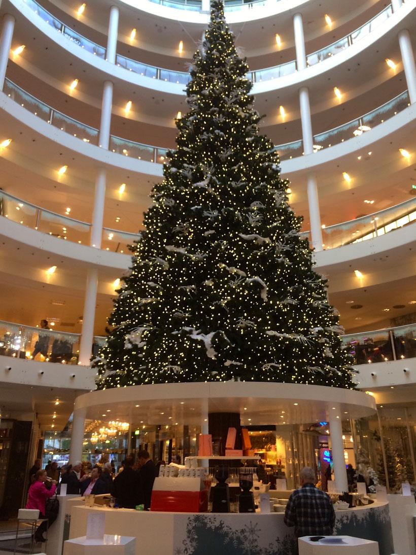 Übereifer. Der erste Weihnachtsbaum im Herbst 13 hat uns im Kaufhaus Breuninger in Stuttgart geblendet