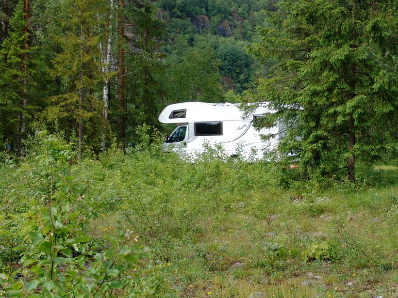 Unser Stellplatz in Dalen liegt im Wald