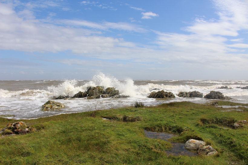 Sandyhills Bay. An der sichelförmigen Bucht liegt der gleichnamige Campingplatz