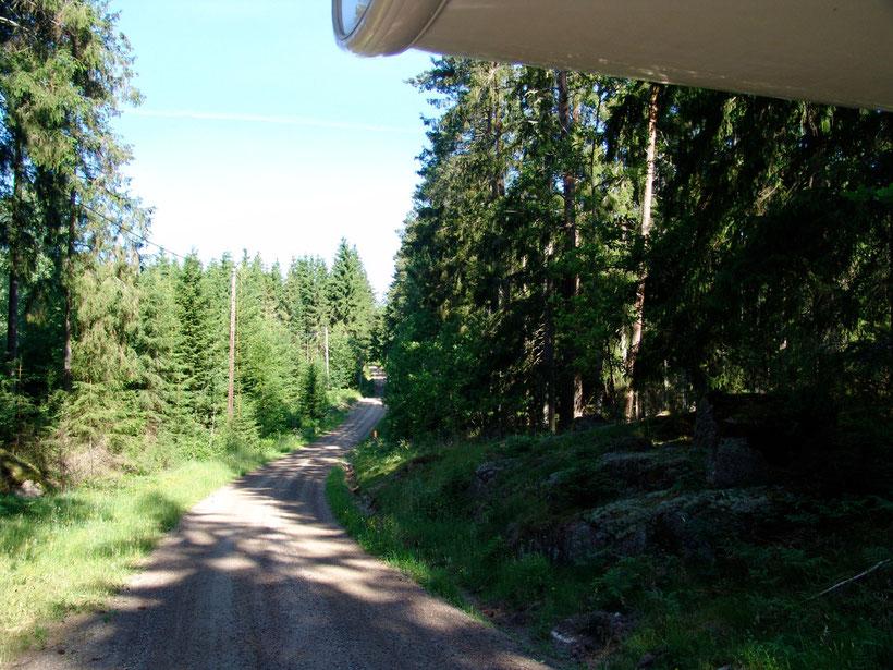 Unsere Fahrt durch die Wälder von Smaland