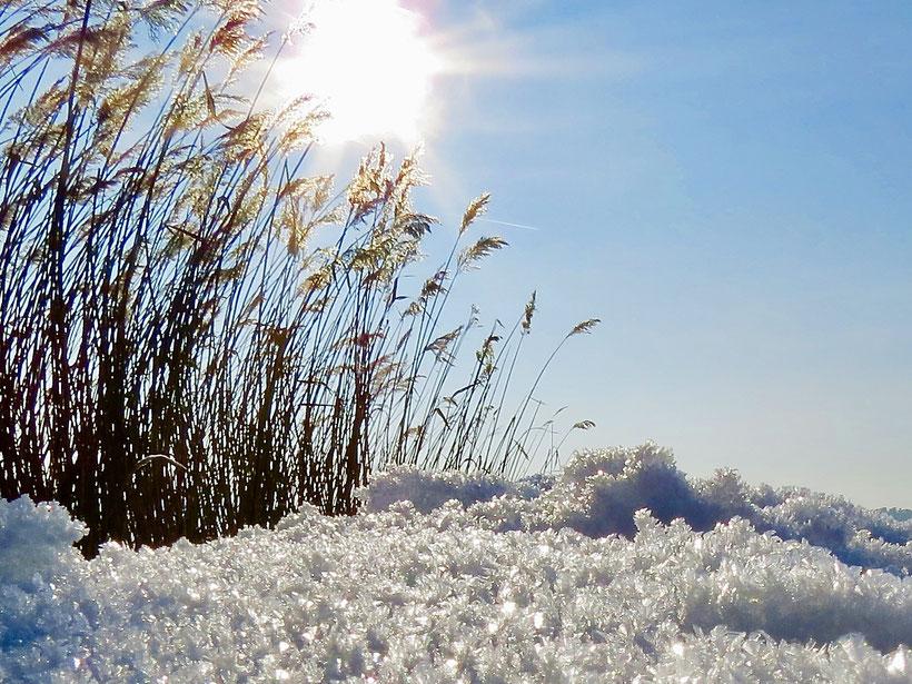 Winter in Mecklenburg, Zwenzow, Labussee, Schneekristalle