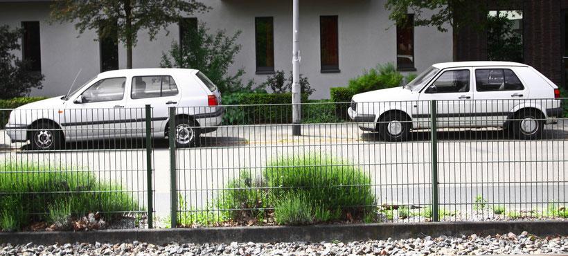 Golf II und Golf III aus Mannheim (2015)