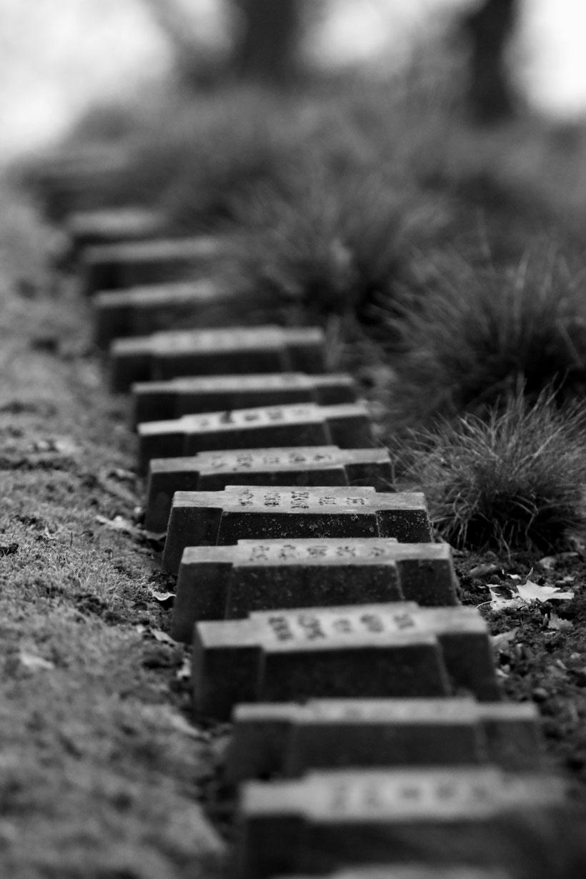 Ehrenfriedhof Kastel-Staadt