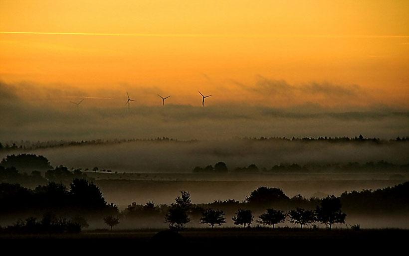 Eines Morgens im September 2011 auf dem Weg zur Arbeit.