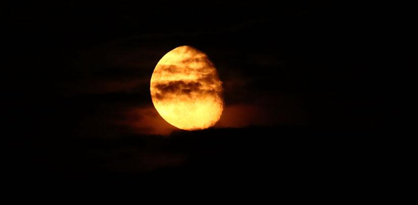 Mond 2016