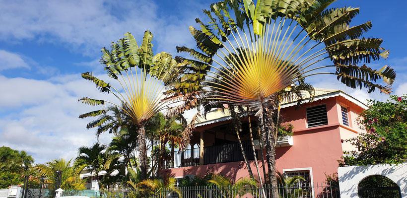 Villa Couleurs Antilles, location de gîtes bord de mer à Sainte Anne