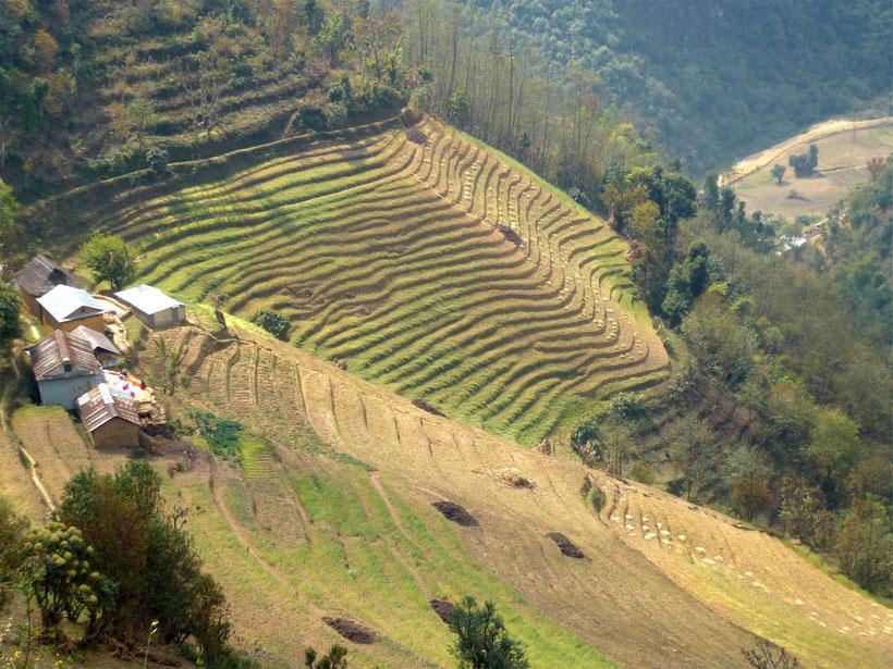 Panauti Mandala trek - trek Kathmandu valley - trekking Panauti - trek Namo Buddha