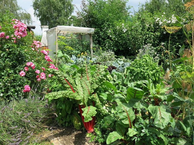 Gartenpflege mit Kompost, Gemüsebeet
