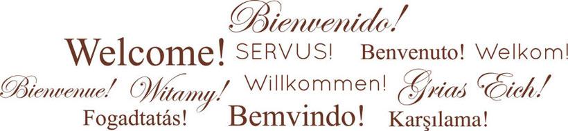 welcome! Bienvenido! Servus! Benvenuto! Welkom! Bienvenue! Witamy! Willkommen! Grias Eich! Fogadtatas! Bemvindo! Karsilama!