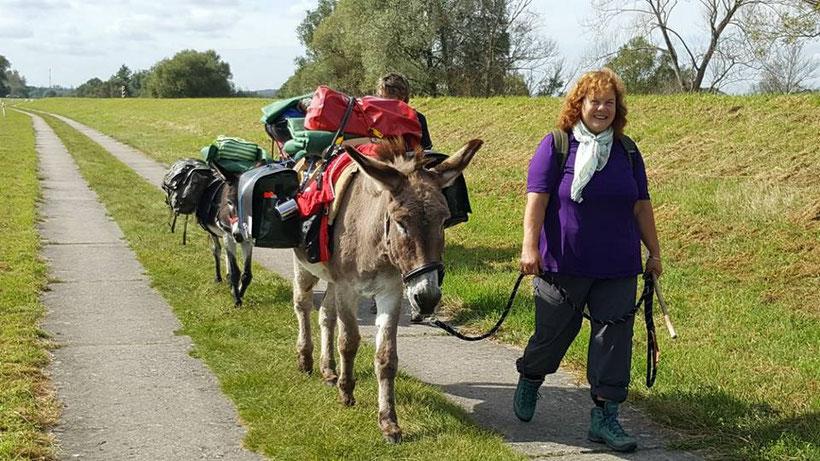 Eselfreunde im Havelland e. V. | Eselwanderung durch Nord-Ost-Polen. Christine Möller und Filmesel Sandor