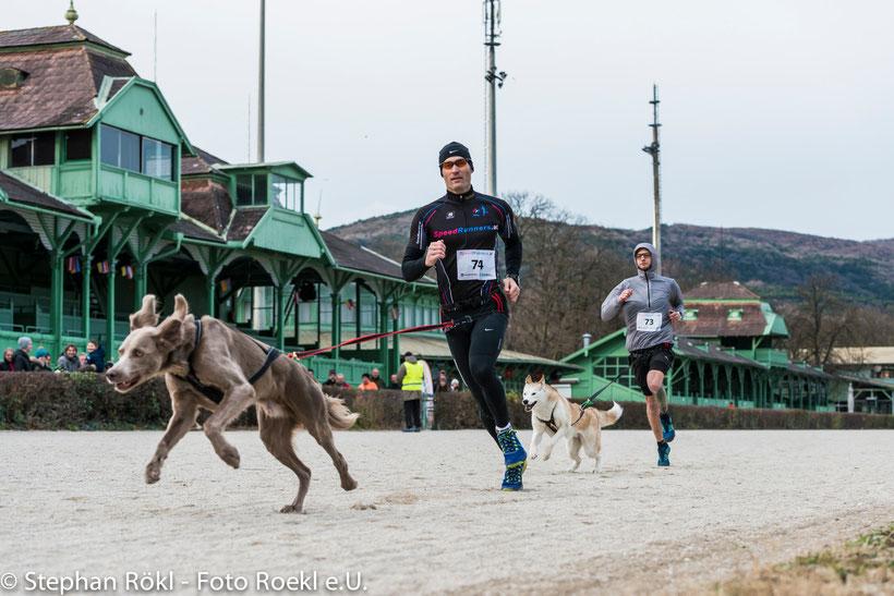 """Canicrosser Markus Gerstl im Interview: """"Wenn der Hund beim Sport auf dich achtet, dann ist das sehr schön"""""""