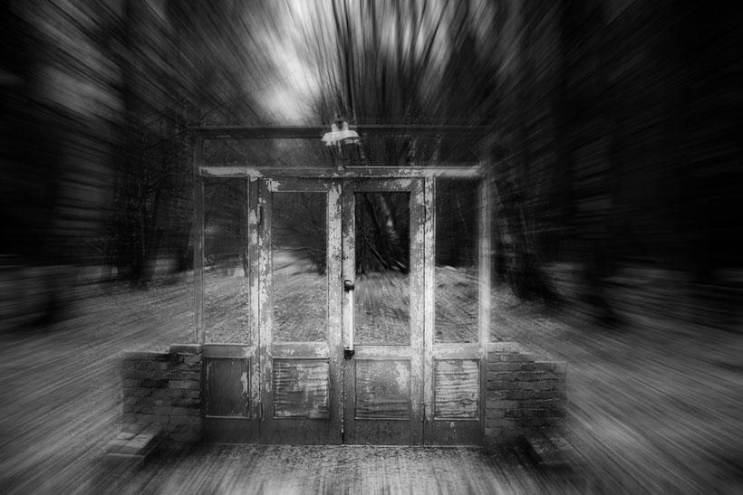 Mystische alte Tür mitten in der Natur, Birkenwald.