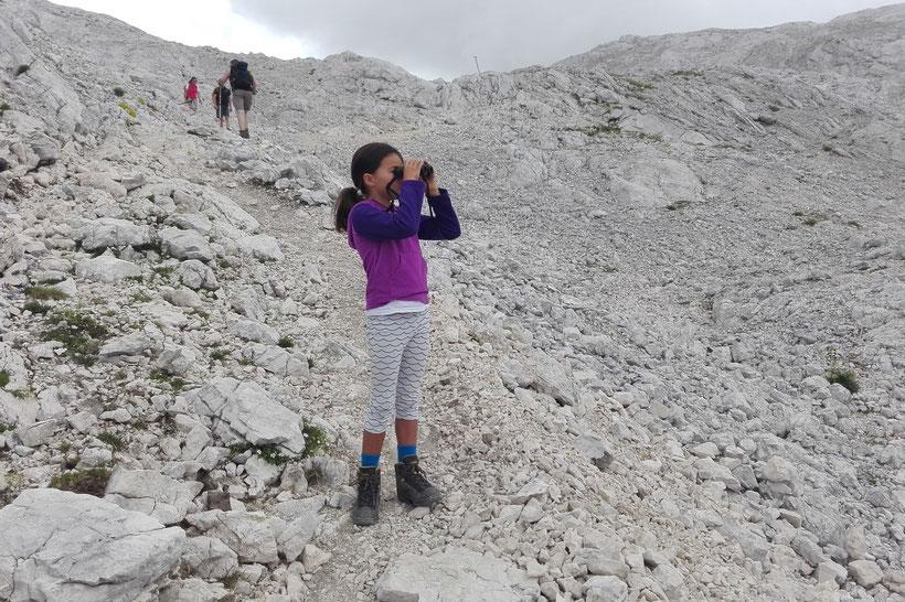Miriam hat Bergziegen am Hang entdeckt