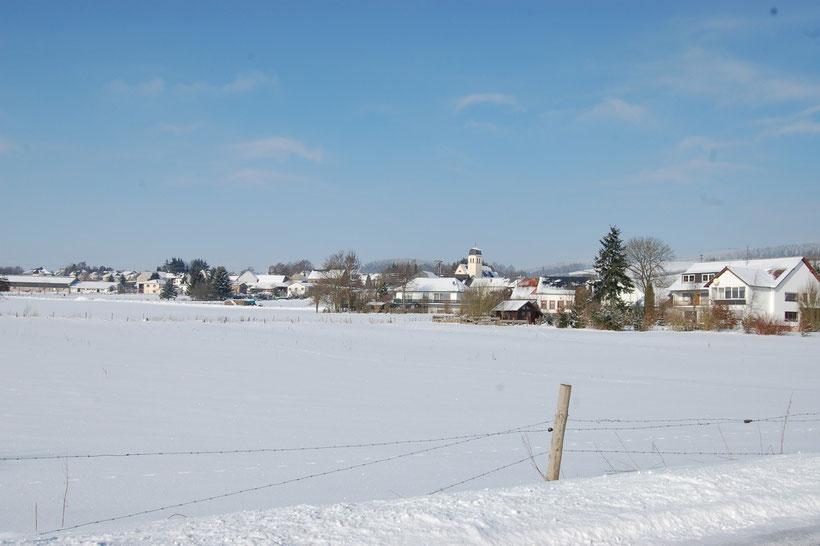bei Schwirzheim, 2010 (Eifelkreis Bitburg-Prüm)