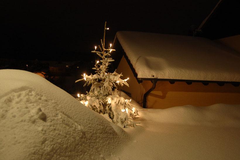 Katzwinkel, Dezember 2010 (Vulkaneifelkreis)