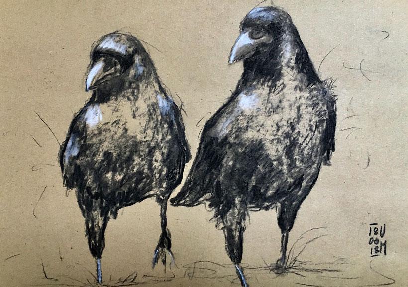 Zwei Raben gezeichnet mit Kohle auf Packpapier, A4, 18.06.18, Ulrike Martens