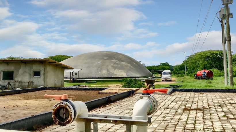 Covered lagoon digester - biodigestor para residuos de matadero - rastro - frigorifico