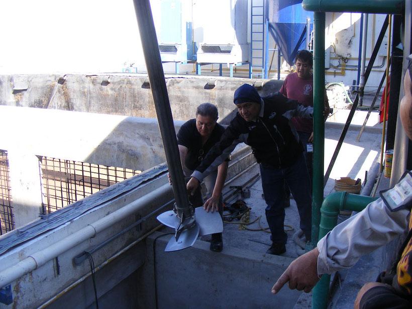 Agitador para biodigestor aprovechamiento de residuos de extracción de aceite de aguacate