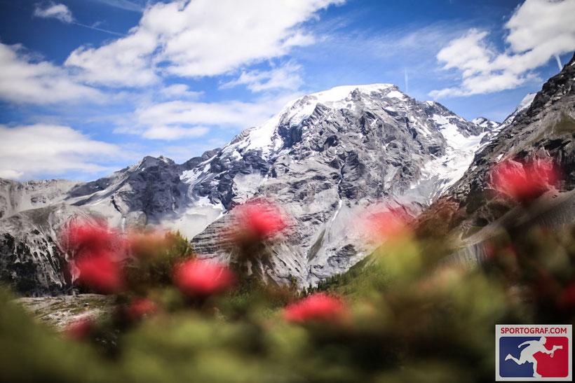 Vor der Kulisse der markanten Berglandschaft rund um König Ortler überqueren alle die Ziellinie auf der Passhöhe des Stilfserjoch (2.757 m).