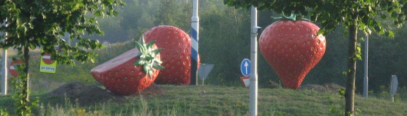 www.artbreak-uden.com www.artbreak-uden.nu www.artbreak-uden.nl Mieke van Rosmalen Rotondekunst Aardbeien van Jan