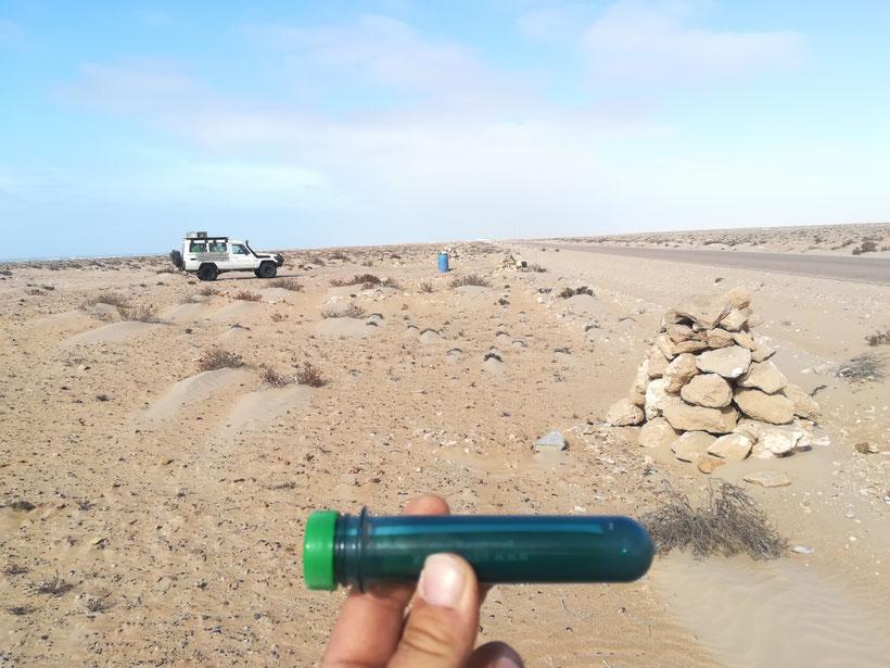 Der neue bisher noch nicht gefundene Geocache