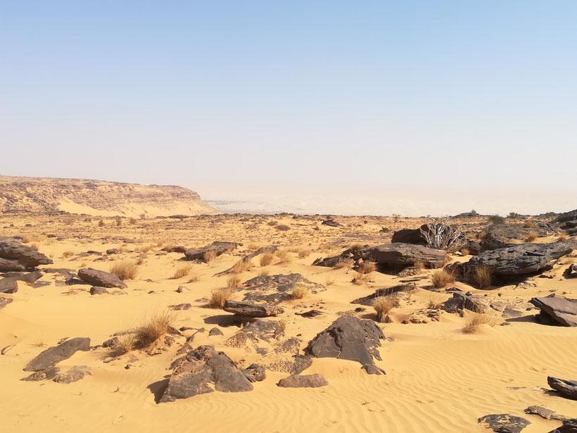 Eine große Falaise/Abbruchkante zu einer tiefergelegenen sandigen Ebene - in der Gizikarte heißt das Gebiet El Batene