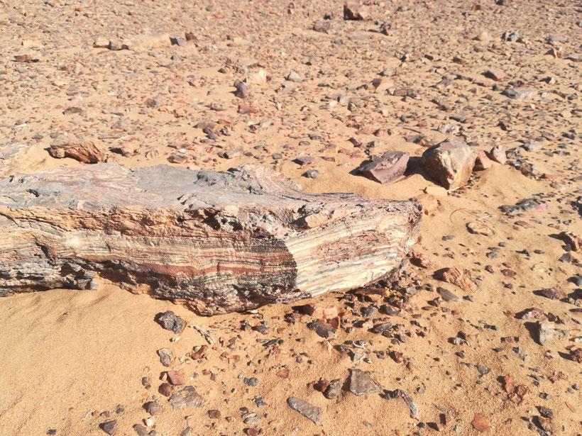 Stein in der Richat Struktur
