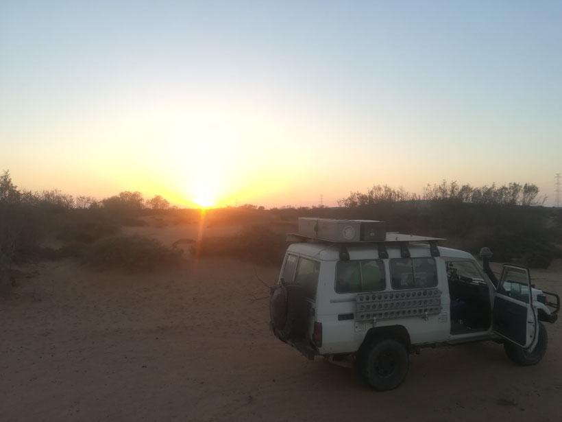 Unser Schlafplatz in einem Wadi südlich von Guelmin bei N28° 56.540 W010° 00.930