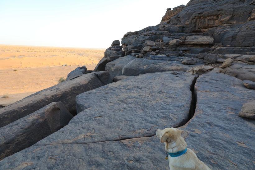 Im Hintergrund ist unser einsames Camp am Rand der Dünen zu sehen