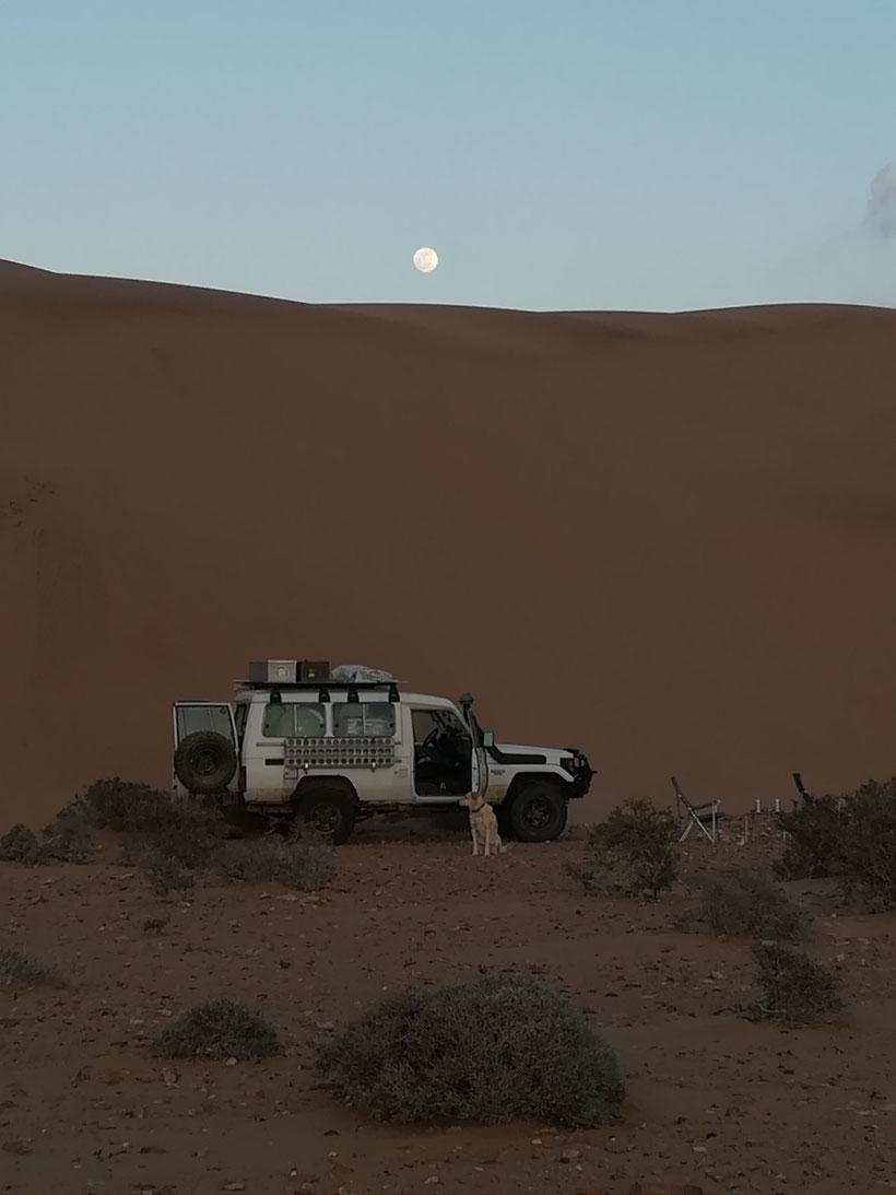 Unser Schlafplatz am Fuß einer goßen Sanddüne bei N28°01.350 W012°10.730 - nicht weit entfernt geht es zum Wasserfall Khaoui Naam