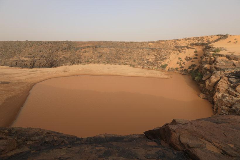 Matmata - hier findet man einige der letzten Saharakrokodile