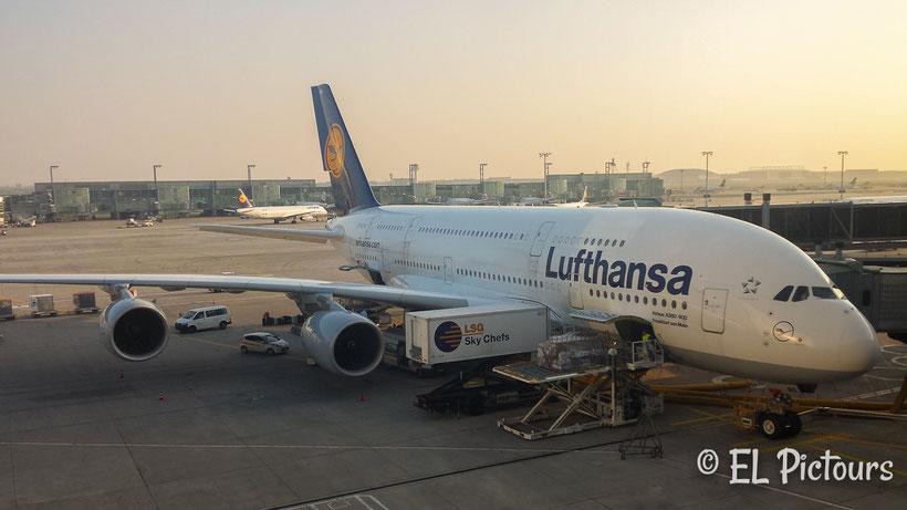 A380 Airport Frankfurt
