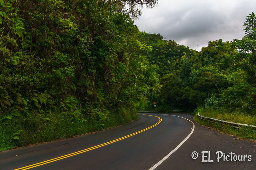 Road to Hana, Maui, Hawaii