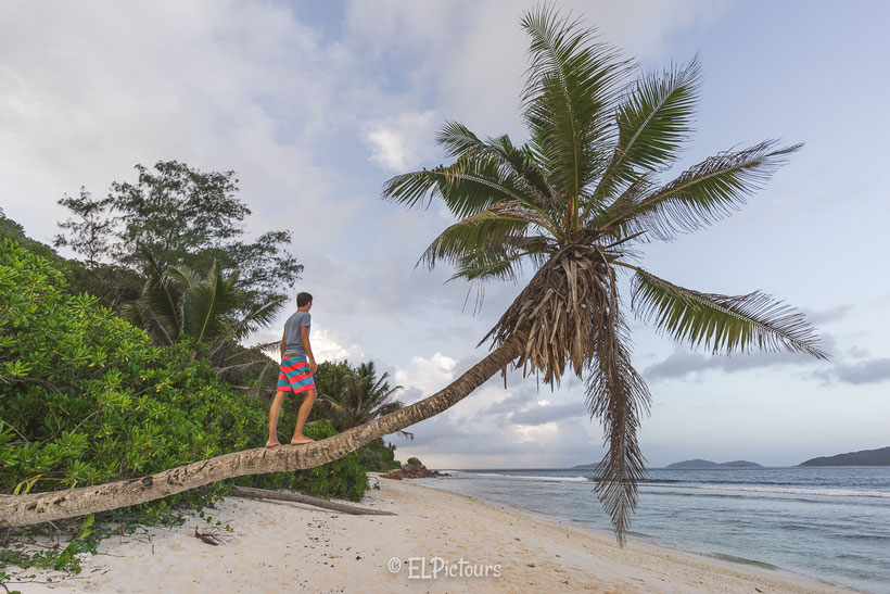 La Digue, Seychellen, Anse Fourmis