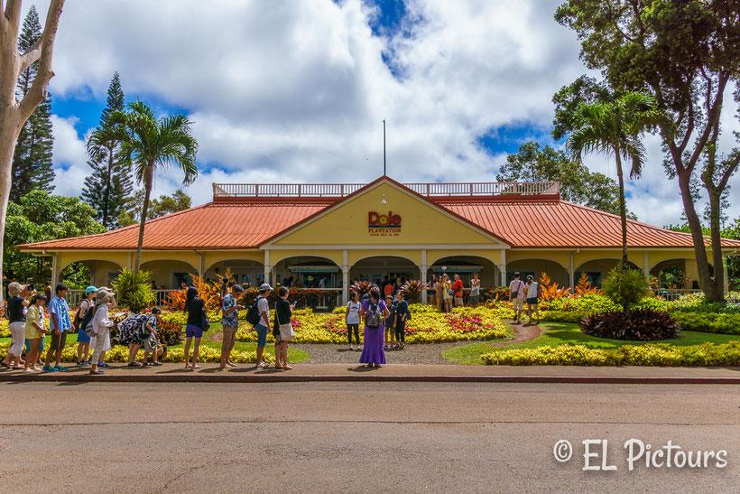 Dole Plantation, Oahu