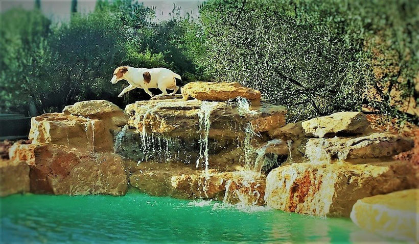 cascade-piscine