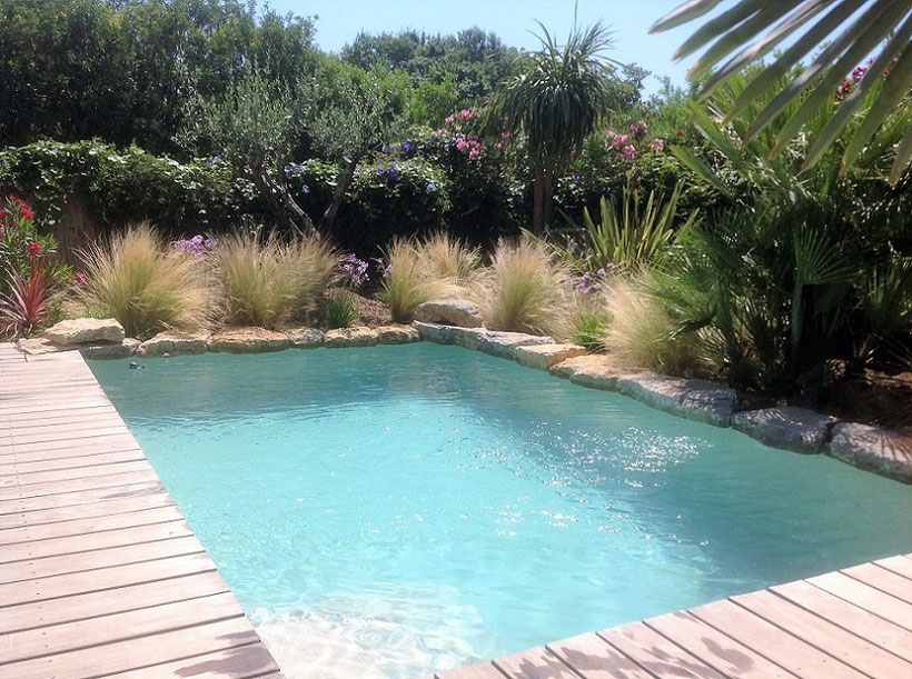 mini-piscine-bois