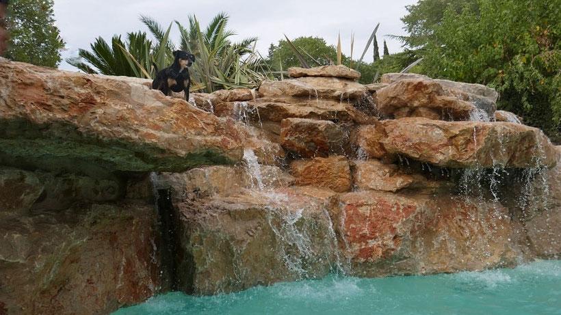 bassin gros rochers