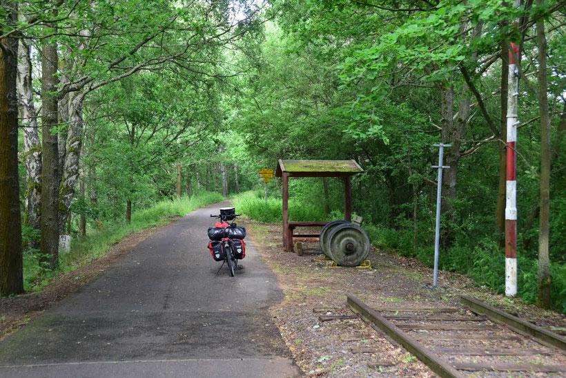 Tolle Radwege ich Tschechien - hier auf einer ehemaligen Bahntrasse