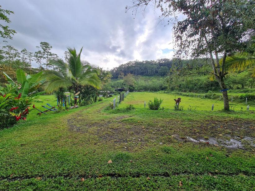 Hacienda Monte Carlo Costa Rica Kind Kleinkind Turrialba