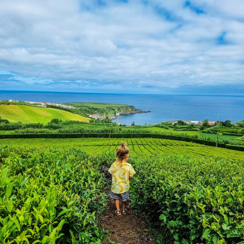 Teeplantage Porto Formoso Kleinkind Kind Familie