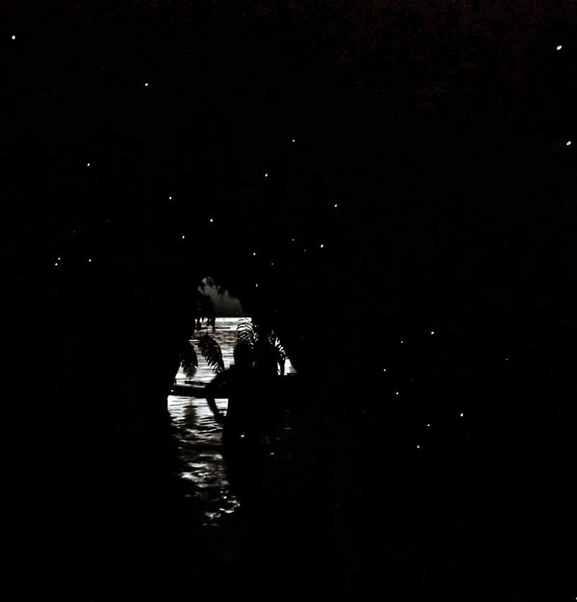 Glühwürmchenhöhle