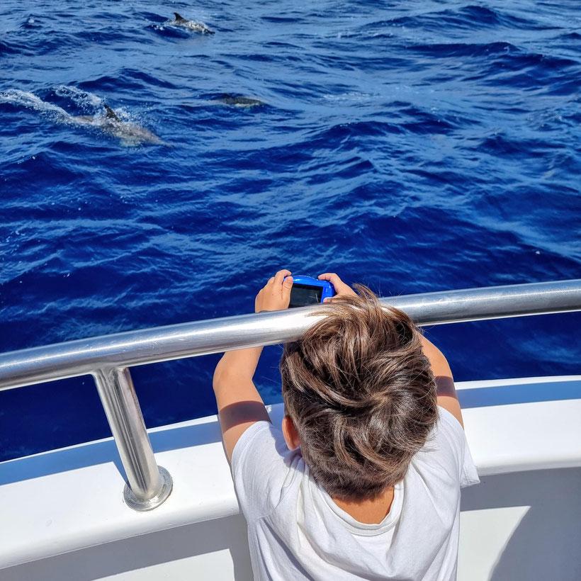 Whale Watching Sao Miguel Ponta del Gada Kind Kleinkind Baby