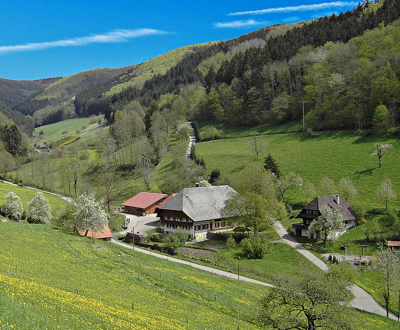 Mühlenbach. Die Trachtenkapelle Mühlenbach feiert vom 12.