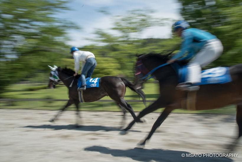 kusakeba, hipódromo, cavaleiro, cavalos, Inabe city, Mie prefecture, Japan,