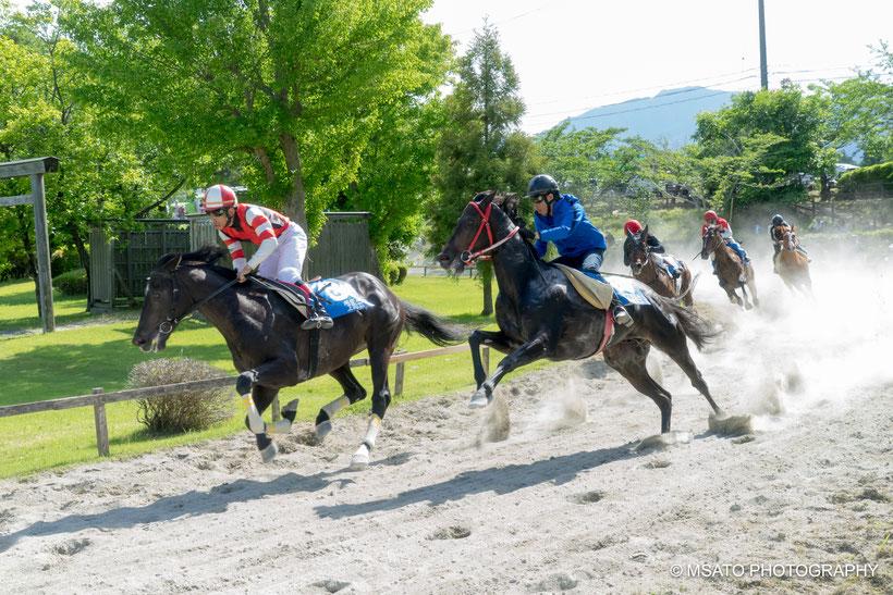 kusakeba, hipódromo, cavaleiro, cavalos, Inabe city, Mie prefecture, Japan, santuário, jinja